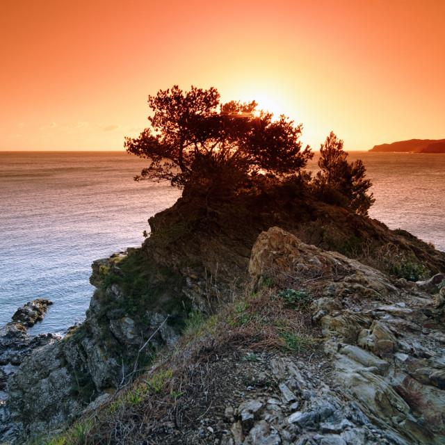 """""""Vermeille coast sunrise"""" stock image"""