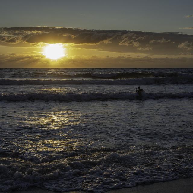 """Swimming At Sunset"" stock image"