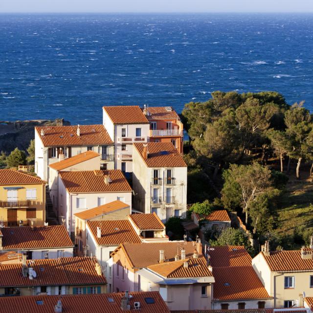 """Port-Vendres coast"" stock image"