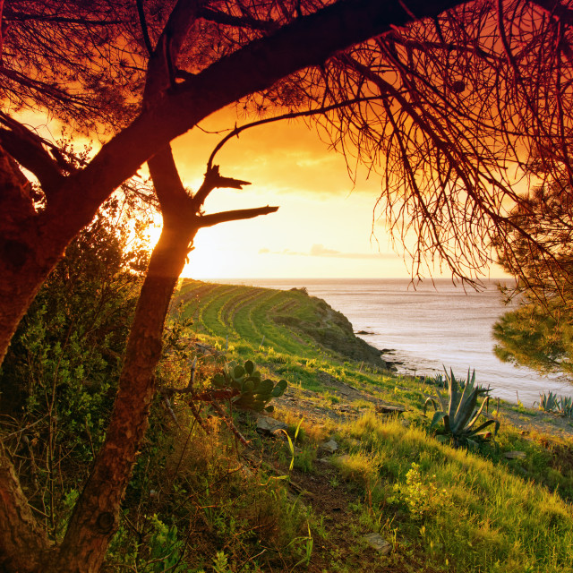 """Coastal path"" stock image"