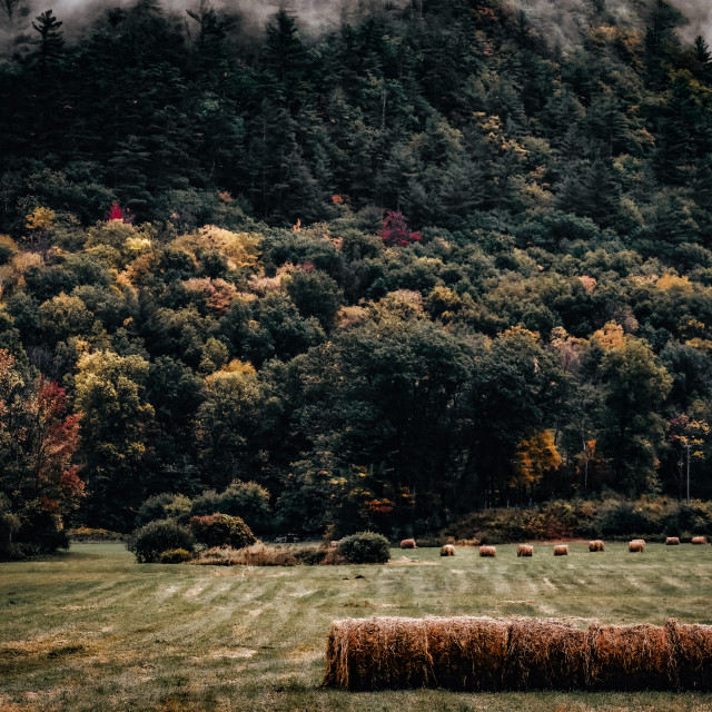 """""""rural scene in along the route through Vermont"""" stock image"""