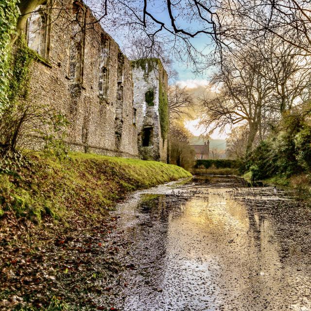 """Bishops Waltham Palace"" stock image"