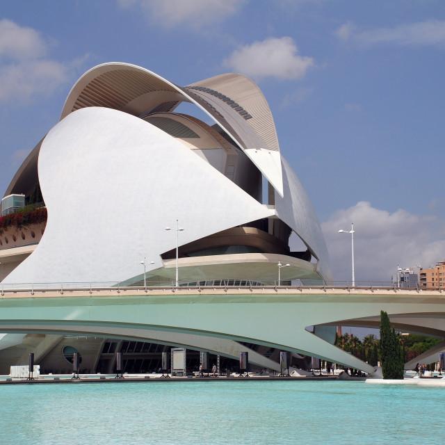 """""""Palau de les Arts Reina Sofia, Valencia"""" stock image"""