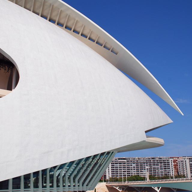 """""""Palau de les Arts building in Valencia"""" stock image"""