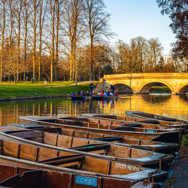 """""""Punts on the River Cam"""" stock image"""