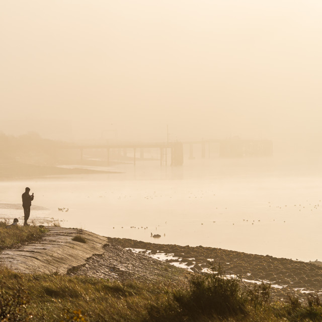 """Purfleet, Essex, England - November 30 2019: A man walking his dog along the..."" stock image"