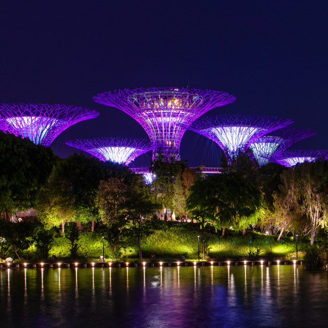 """""""gardens by the bay"""" stock image"""
