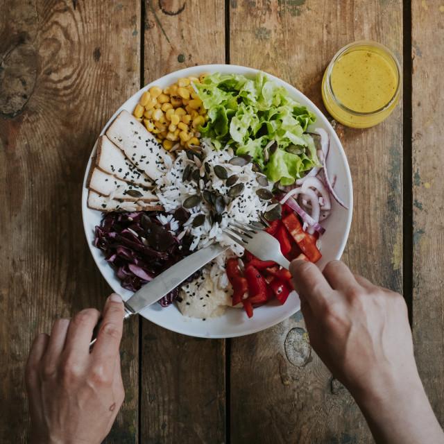"""Top view of person eating bowl of vegan food"" stock image"
