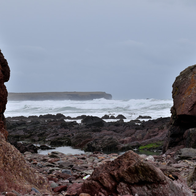 """""""A view of Linney Head from Freshwater West on a February afternoon."""" stock image"""