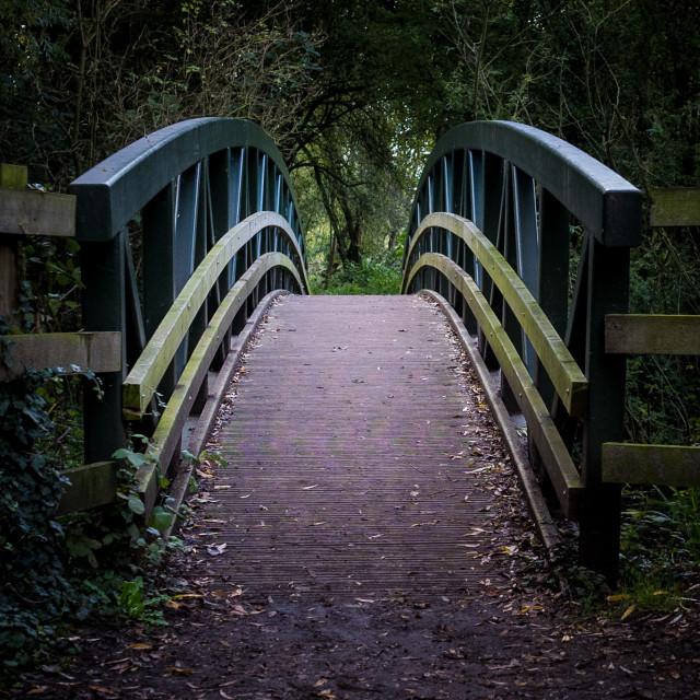 """Just a Bridge..."" stock image"