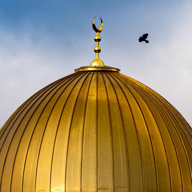 """Cambridge Central Mosque Cambridge UK."" stock image"