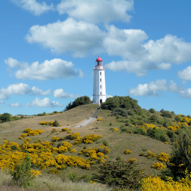 """Hiddensee,baltic Sea,Germany"" stock image"