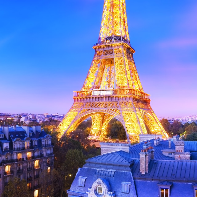 """""""Panoramic image of the Eiffel Tower at dusk"""" stock image"""
