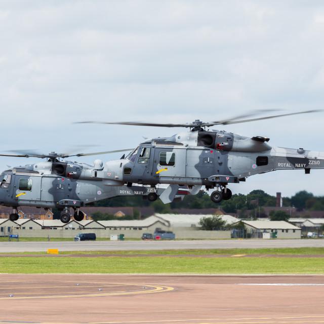 """Royal Navy Wildcat pair"" stock image"