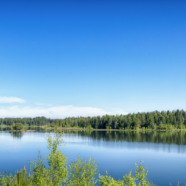 """""""Lake scene with vibrant color"""" stock image"""