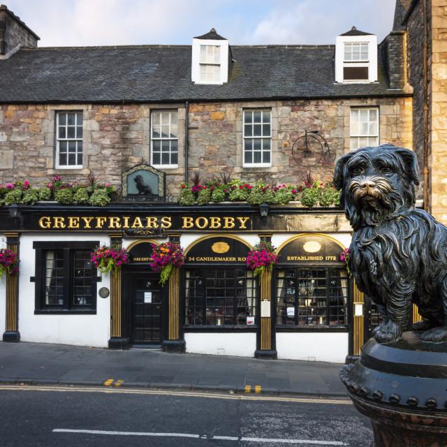 """Greyfriars Bobby 2"" stock image"