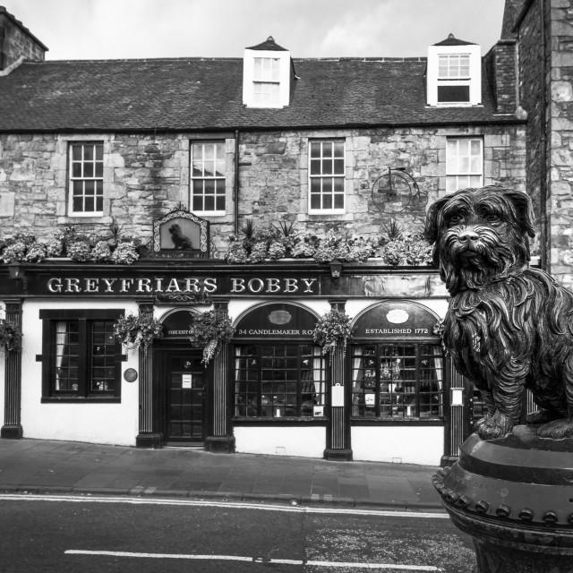 """Greyfriars Bobby 1"" stock image"