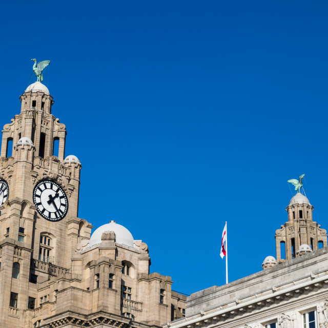 """""""Liverbirds high above Liverpool"""" stock image"""