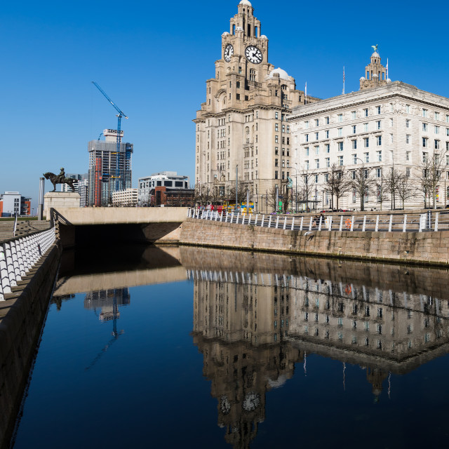 """""""Reflections of the Liver Building"""" stock image"""