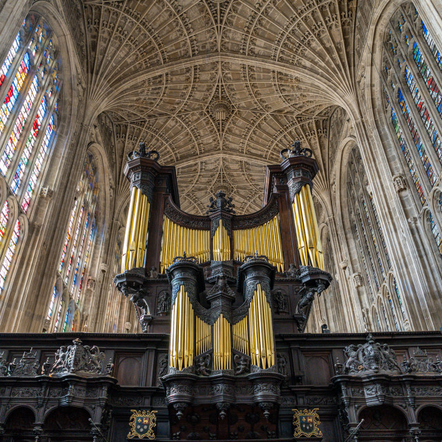"""Kings College Chapel Organ."" stock image"
