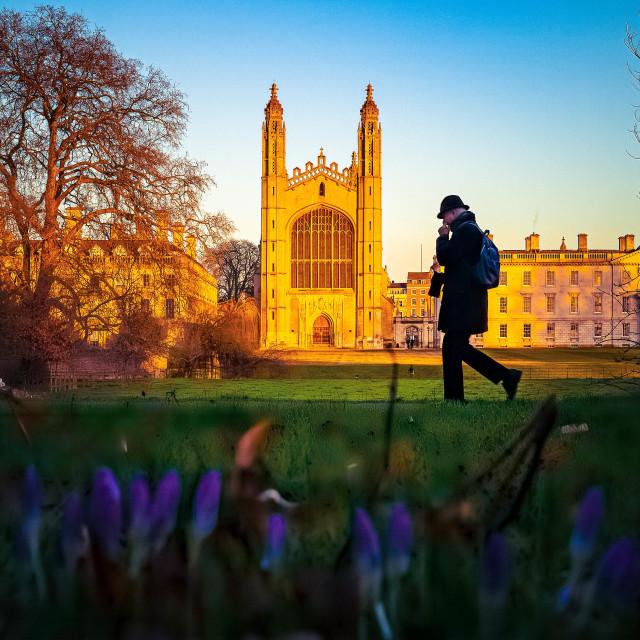 """""""Sunset Kings College Chapel Cambridge UK"""" stock image"""