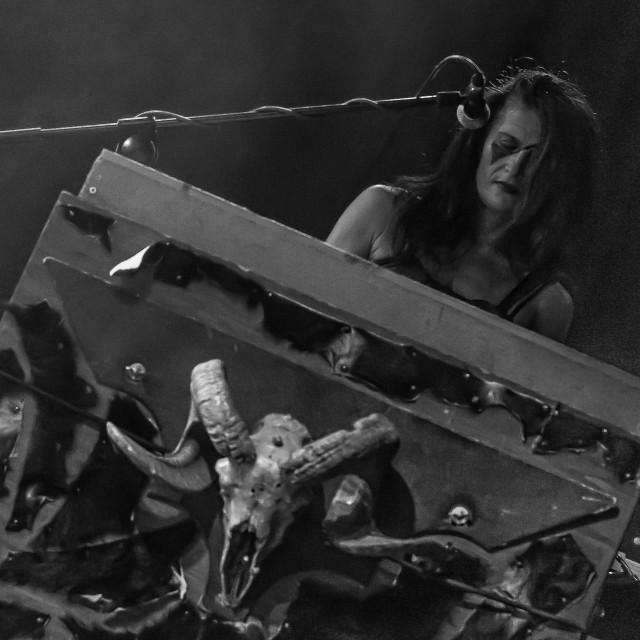 """Diabula Rasa at Malpaga Sounds 2017"" stock image"