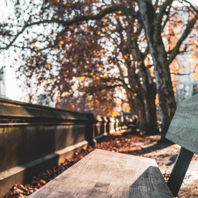 """London, England - November 29 2019 : A bench on the Thames riverside on a..."" stock image"