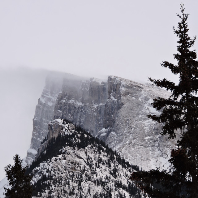 """""""Mt Rundle In Winter"""" stock image"""