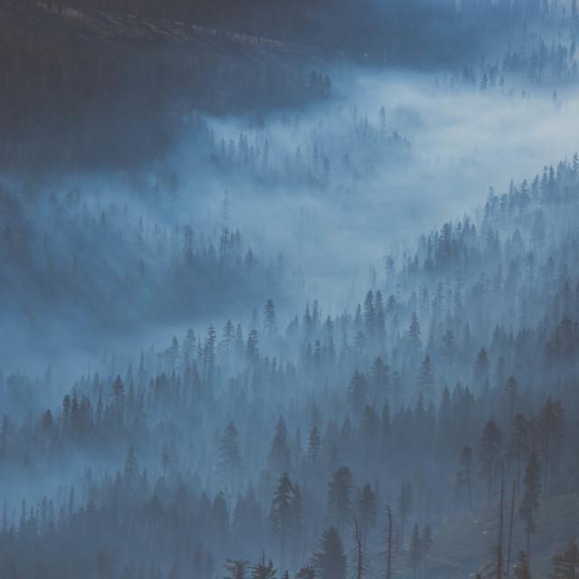 """Blue fog"" stock image"