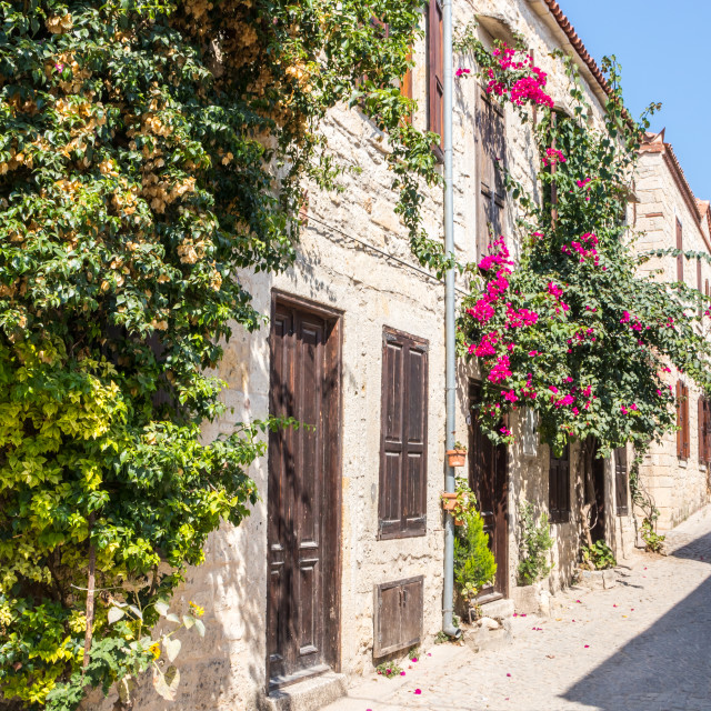 """""""Stone houses covered with bougainvillaea,"""" stock image"""
