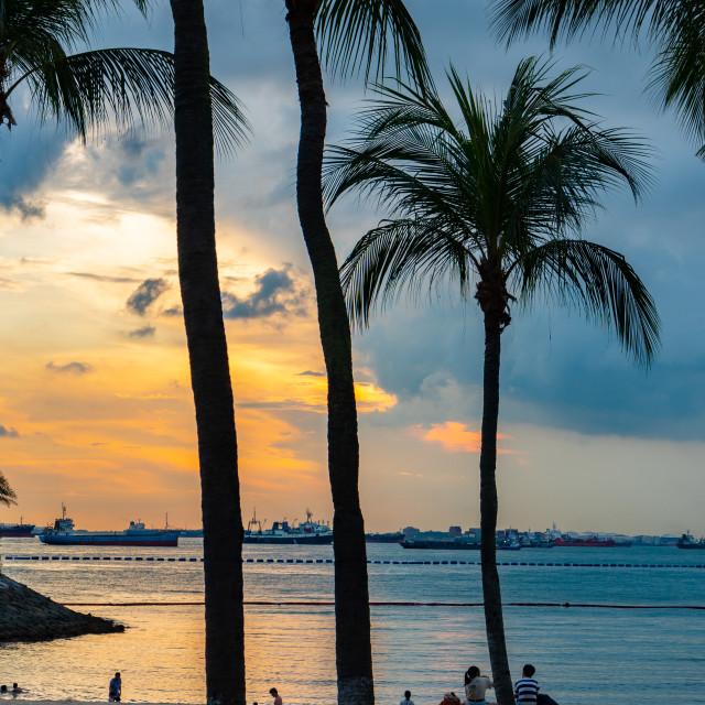"""Sentosa Island, Singapore"" stock image"
