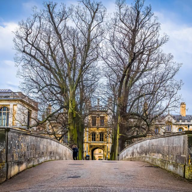 """""""Trinity College Bridge Cambridge UK."""" stock image"""