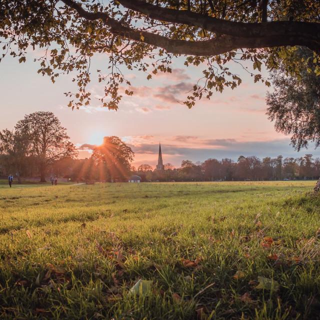 """Sunset, Jesus Green Cambridge UK."" stock image"