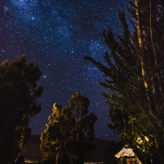 """starry sky in the village with tree"" stock image"
