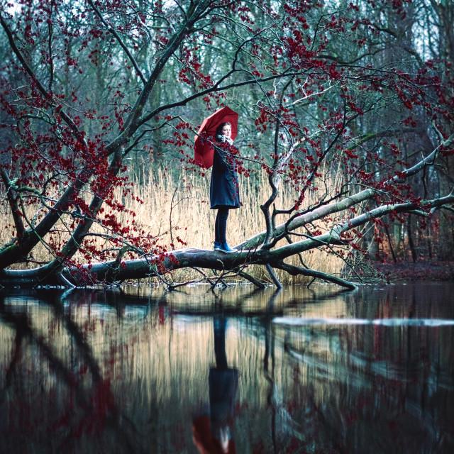 """The red umbrella"" stock image"