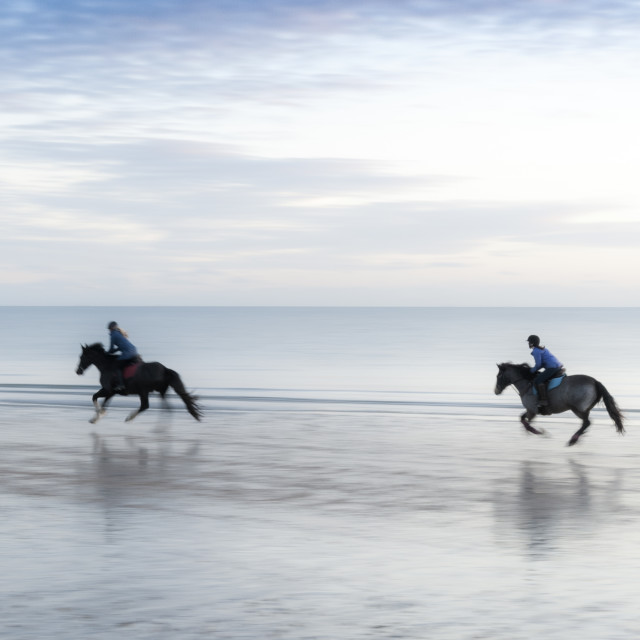 """Horses on West Hayling Island beach, Hampshire"" stock image"