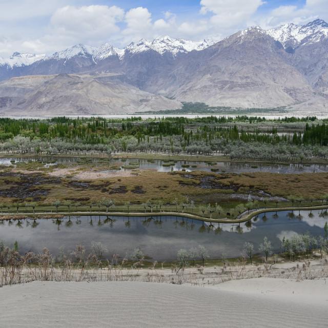 """""""Katpana Desert & Lake"""" stock image"""