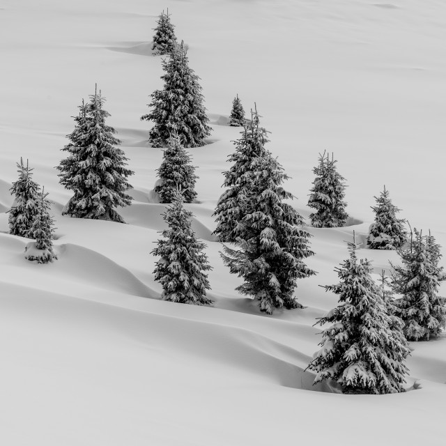 """Snow Waves"" stock image"