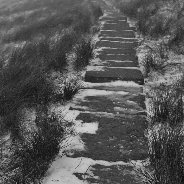 """""""Following the path."""" stock image"""