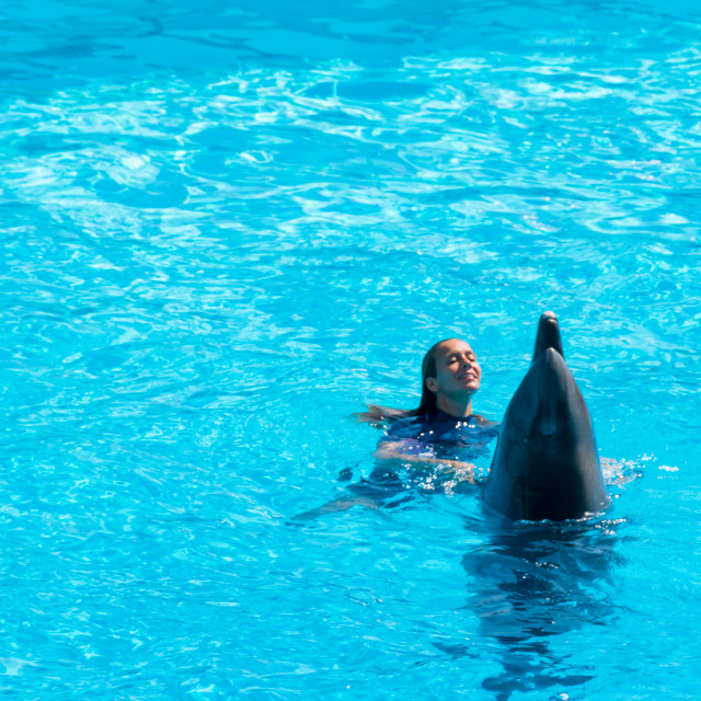 """Dolphin in the middle of his show accompanied by his trainer"" stock image"