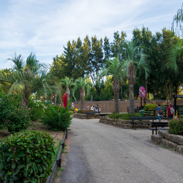 """The Zoomarine park with the palm trees and benches"" stock image"