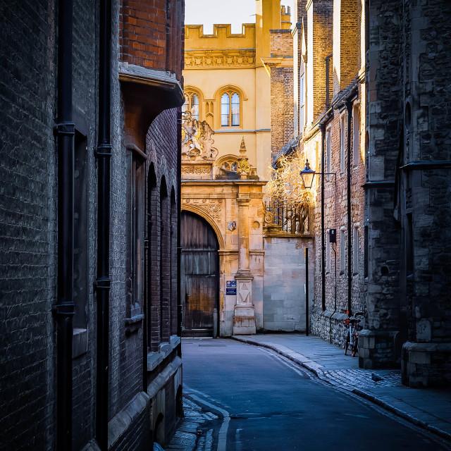 """Sunset, Gonville & Caius College, University of Cambridge."" stock image"