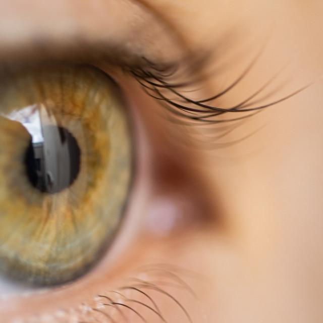 """""""Green eyes"""" stock image"""