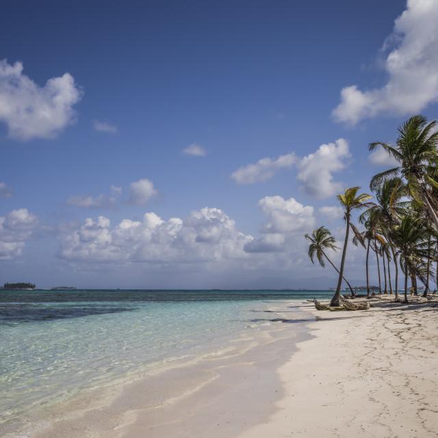 """Beautiful sandy beach with palms on Kuna Yala Islands in Panama"" stock image"