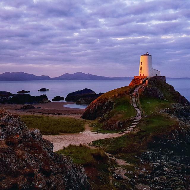"""First light at Llandwyn Island"" stock image"