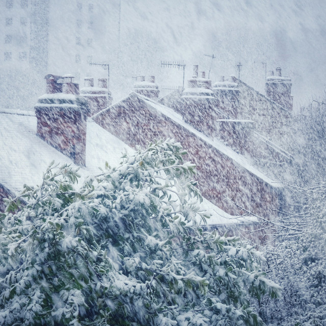 """""""Snow storm on Winchester Street"""" stock image"""