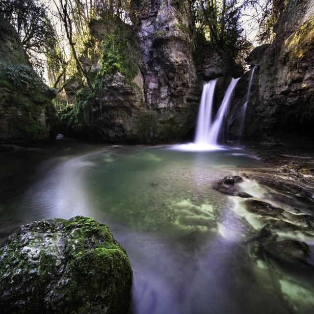 """Jungle paradise"" stock image"