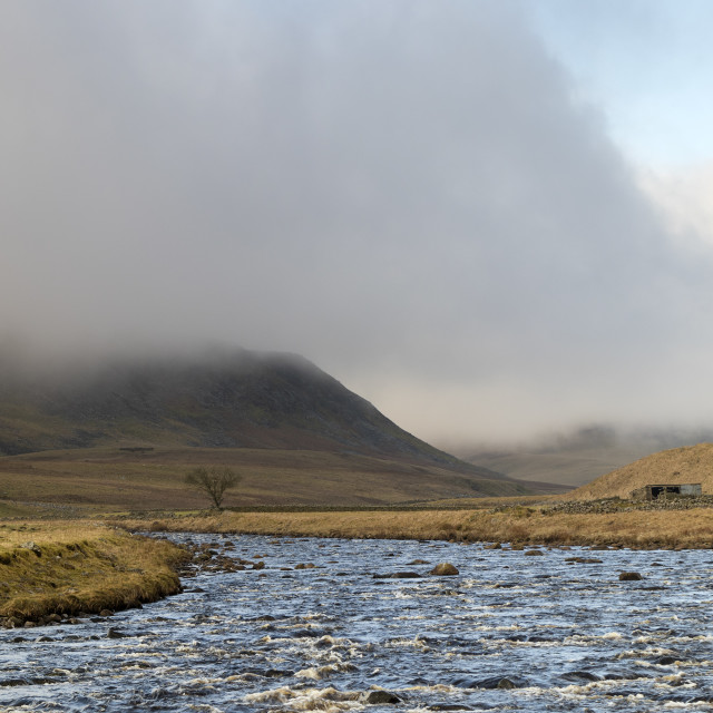 """""""Cronkley Fell and the River Tees, Forest in Teesdale,"""" stock image"""