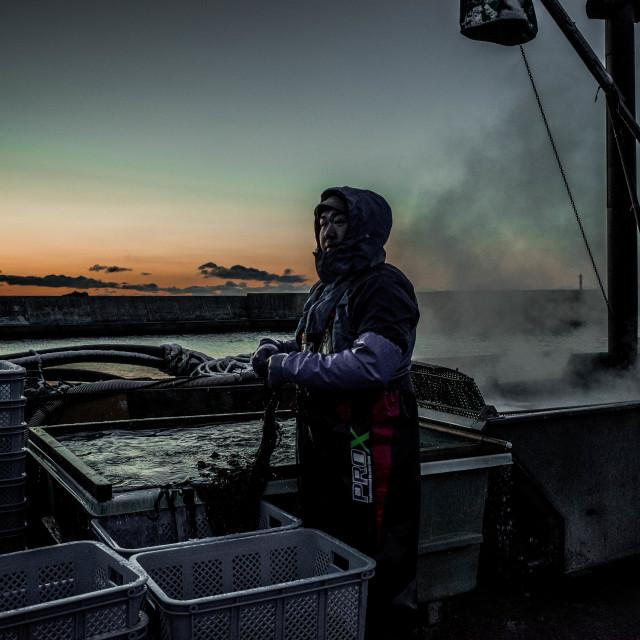 """Seaweed farmer"" stock image"