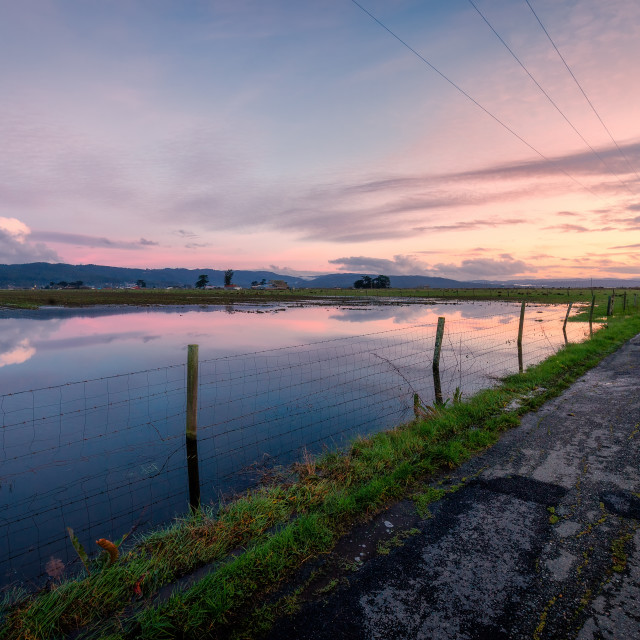 """""""A Flooded Field and Country Road After the Rain"""" stock image"""
